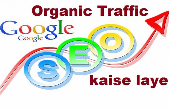 Blog-Website Par Organic Traffic Kaise Laye Jane Hindi Me